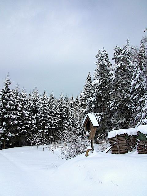 Holzkreuz (48.478572, 15.071802)
