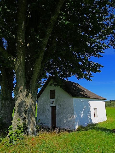 Kapelle Sallegg